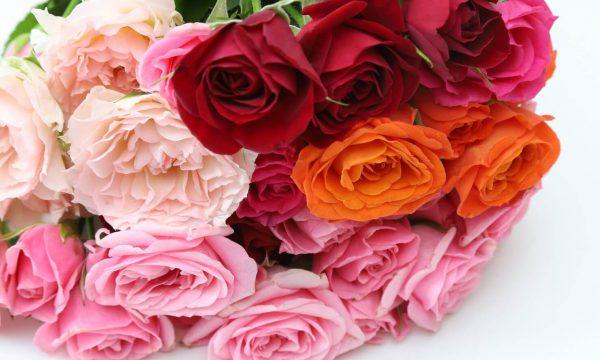 anniversary_flower